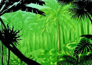 気が生い茂っているジャングルのイラスト