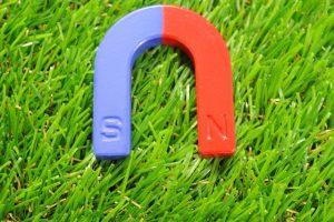 草原の上に置かれた磁石
